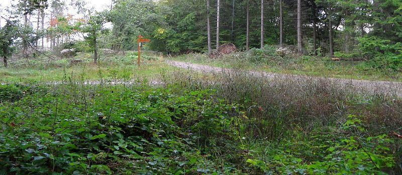 Wildnistrail Heimbach-Zerkall (4.Etappe)