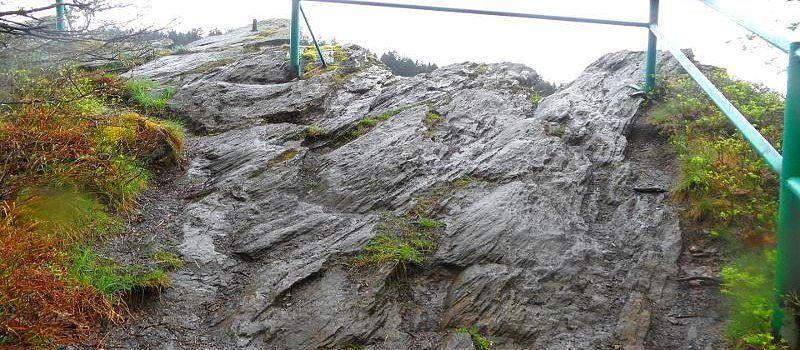 Das Naturschutzgebiet Gebirgsbach Rur