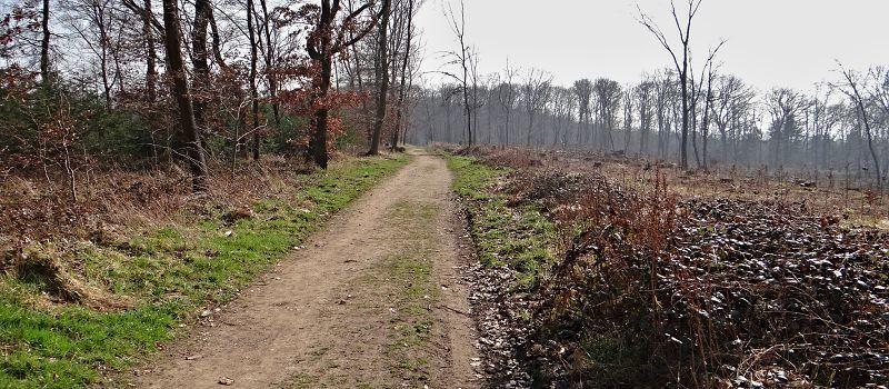 Kreuzau Wanderweg 2