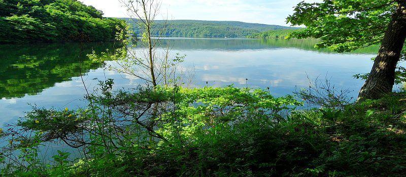 Wasser, Wald und schöne Aussichten