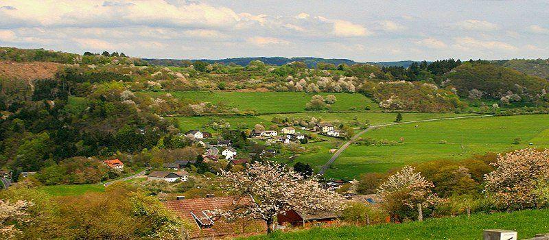 Seifenauel (Dedenborn)