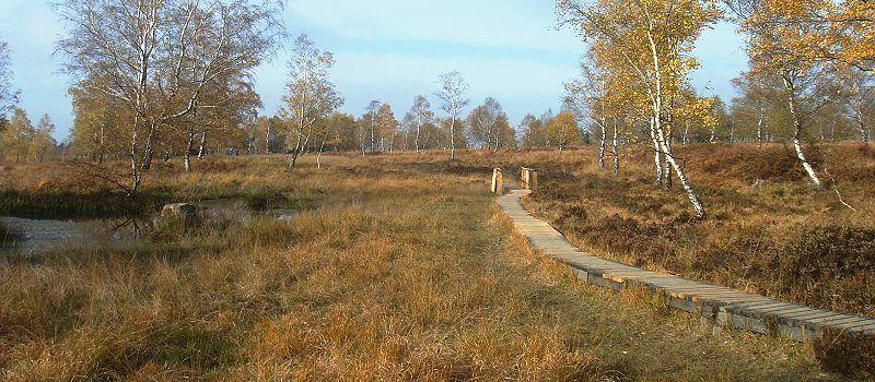 Struffelt-Route