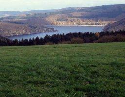 Woffelsbach-Steckenborn Rundweg