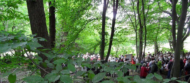 Durch die Drover Heide mit WDR-Lokalzeit