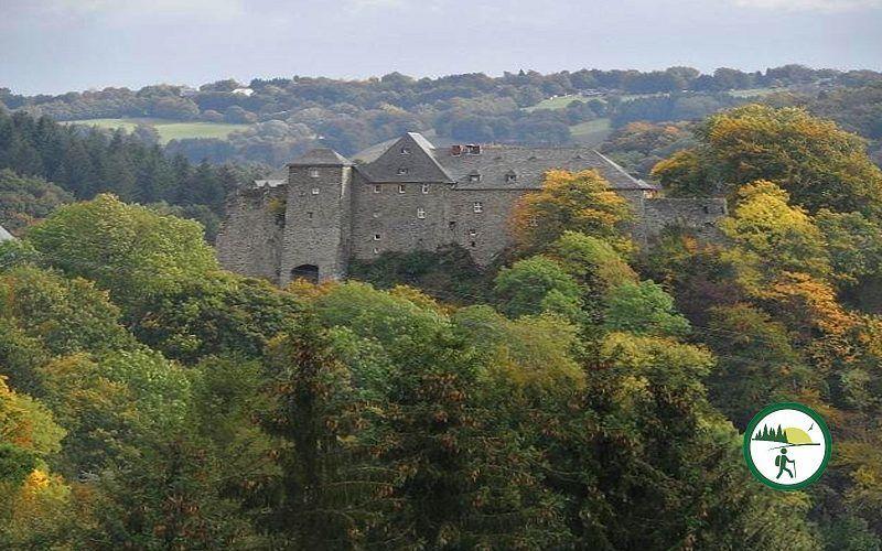 Blick Auf Burg Monschau