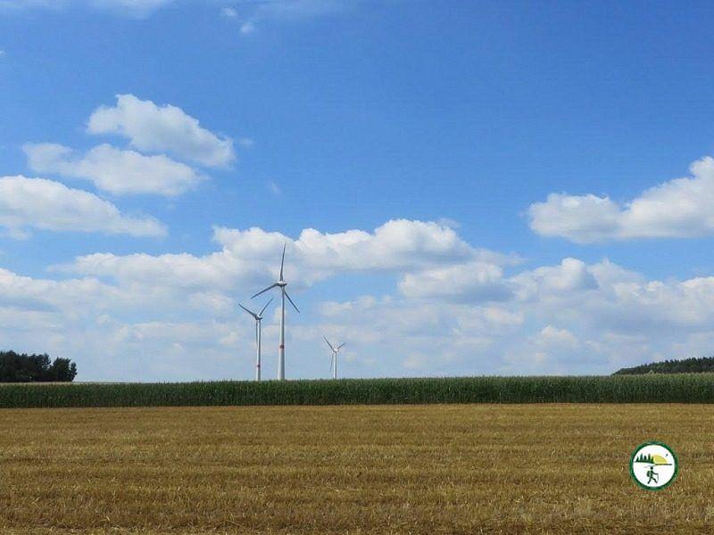 Blick Auf Die Windräder Vom Kierlingsweg