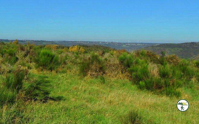 Dreiborner Hochfläche Panoramablick