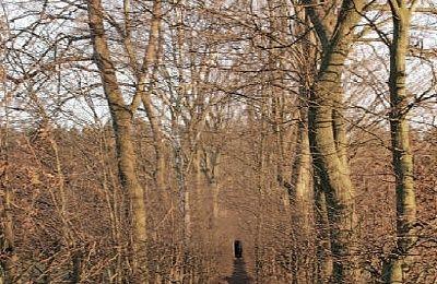 Hemmingway-Trail