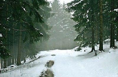 Ochsenkopfweg