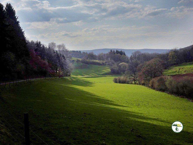 Odenbachtal