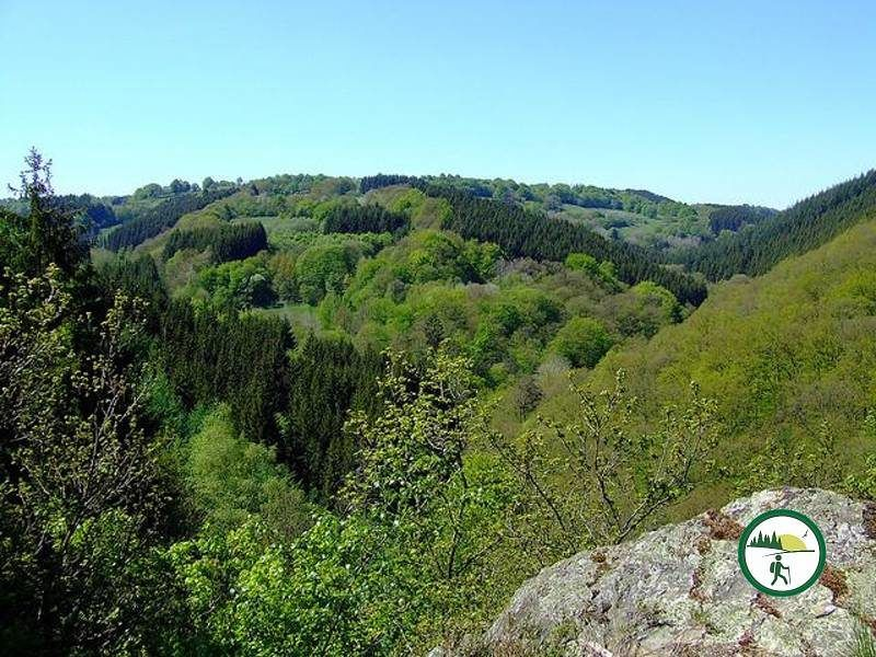 Panoramablick Nationalpark Eifel