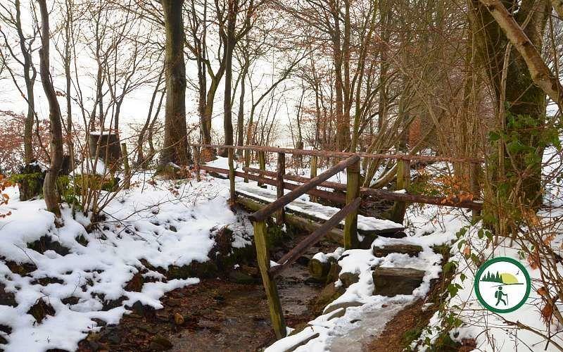 Wanderweg Im Winter