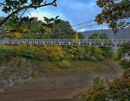 Von Vogelsang über die Urftseebrücke