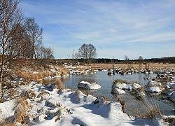 Brackvenn Im Winter